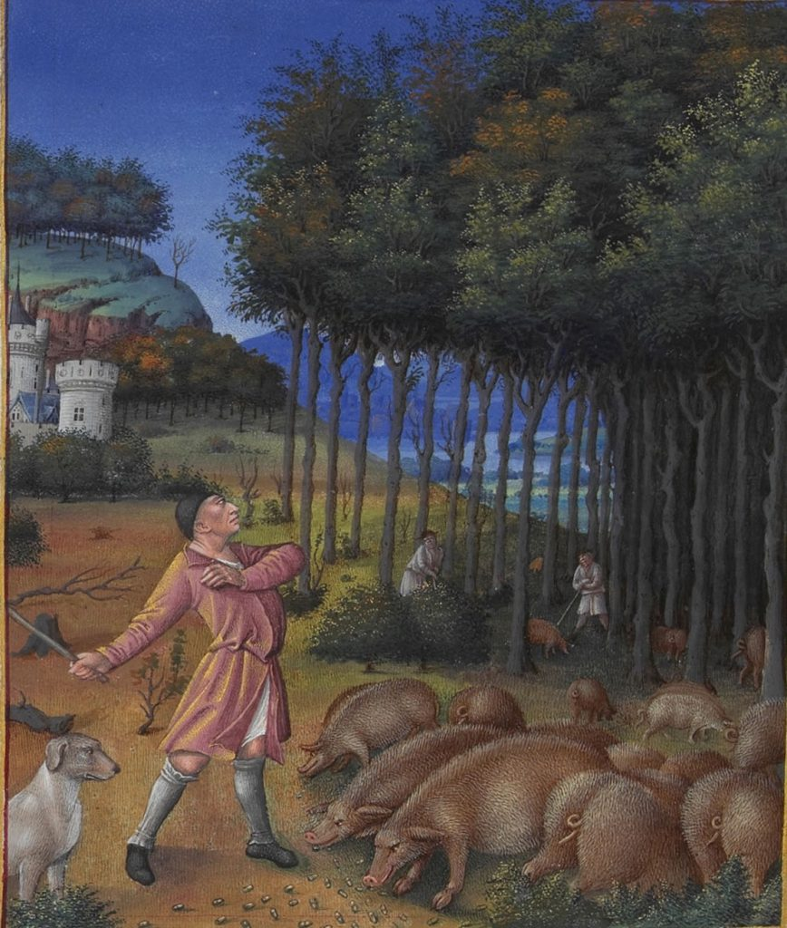 Detail for the month of November showing peasants harvesting acorns for pigs